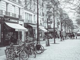 Paris em cinza